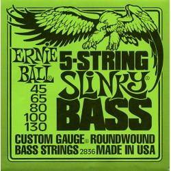 Ernie Ball 2836 (45-130)