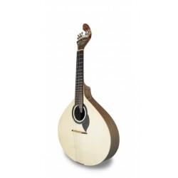 APC GF306 LS Guitarra...