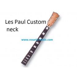 Dr Parts LP Neck-Custom -...